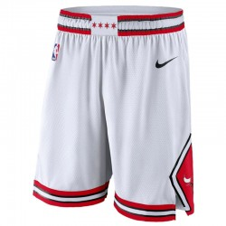 Шорты Chicago Bulls (Nike)