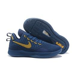Nike Lebron Witness 3