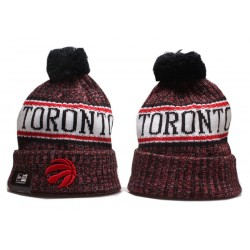 Шапка Toronto Raptors
